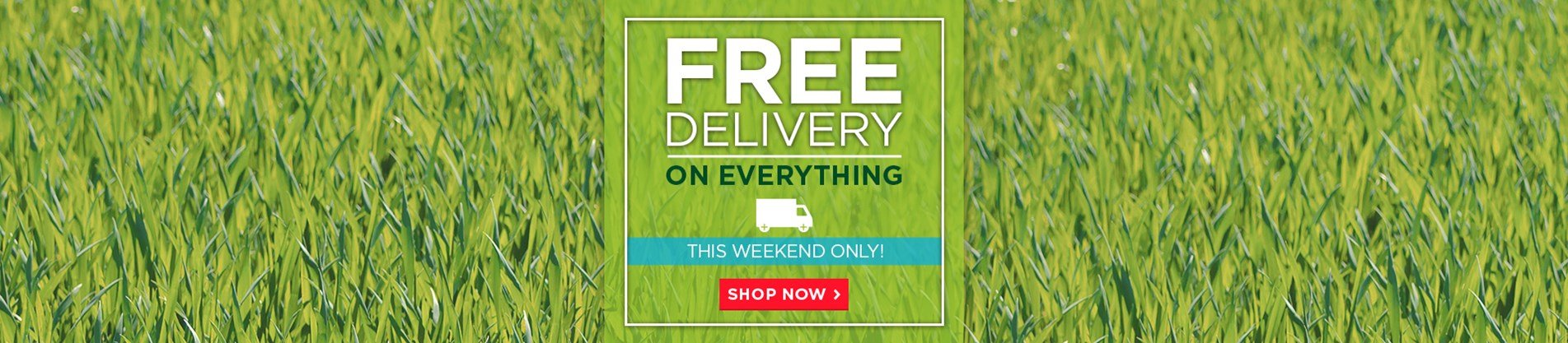 Free Delivery On Everything - This Weekend Only