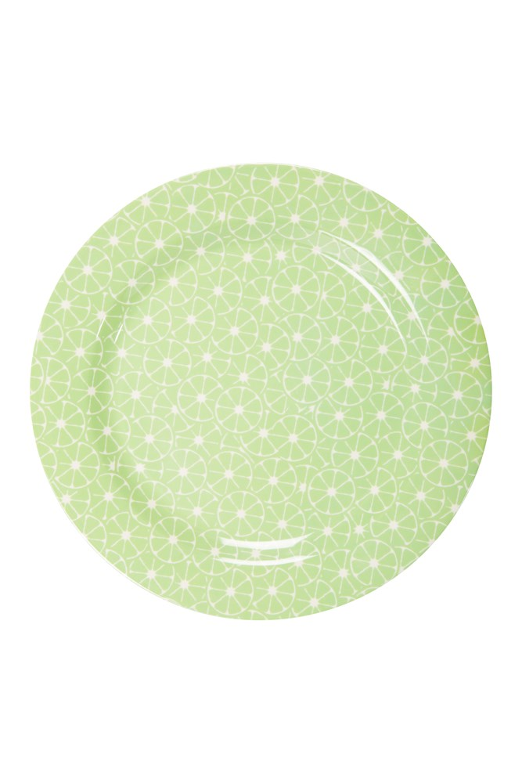 Melamine Picnic Plate - Green