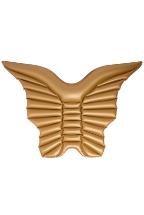Inflatable Wings Float