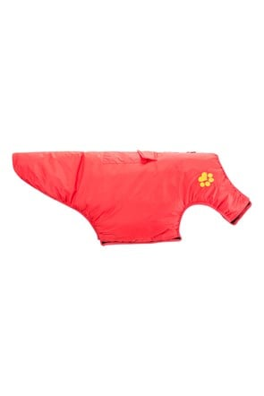 Padded Water-Resistant Dog Jacket - Small