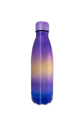 Metallic Double Walled Bottle  - 470ml