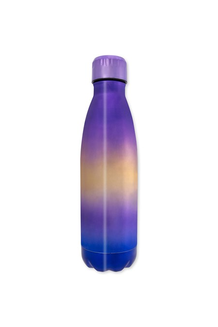 029696 METALLIC DW BOTTLE 490ML