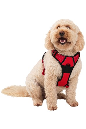 Dog Reflective Padded Harness - Large