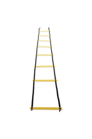 4M Fitness Ladder