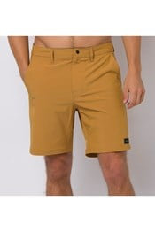 Animal Darwin Mens Twill Shorts